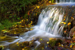 Small waterfall with autumn leaves Stock Photo