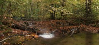 Small waterfall and autumn leaves. Royalty Free Stock Photos
