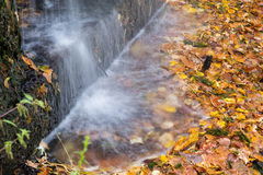 Small waterfall in autumn park Stock Photo