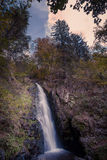 Small waterfall in black forest, Germany Stock Images