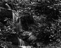 Small waterfall. Black and white waterfall in forest Stock Photos