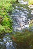 Small waterfall in a creek Royalty Free Stock Images