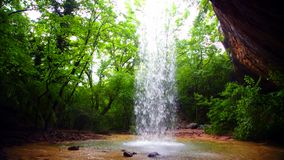 Small Waterfall Falling Down In Wild Forest stock footage