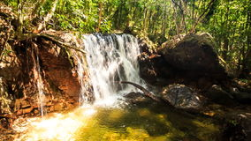 Small Waterfall Falls into Transparent Pond in Tropical Forest stock video footage