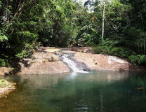 Small waterfall in Fijian jungle Stock Photography