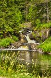 Small waterfall flow into the forest river Stock Photography