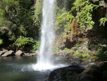 Small waterfall flowing of a basalt rock in a deep forest Royalty Free Stock Image