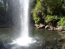 Small waterfall flowing of a basalt rock in a deep forest Stock Image
