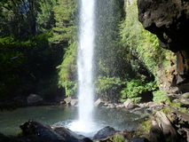 Small waterfall flowing of a basalt rock in a deep forest Stock Photography