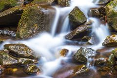 Small waterfall with foamy water and wet stones royalty free stock photo