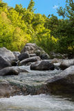 Small waterfall forest Stock Images