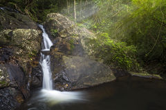 Small Waterfall in the forest. With ray light Royalty Free Stock Images