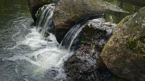 Small waterfall in a forest river stock footage