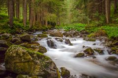 Small waterfall in a forest river with silky water around the rocks in the stream. Long exposure royalty free stock images