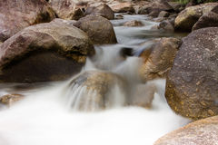 Small waterfall in forest Royalty Free Stock Images