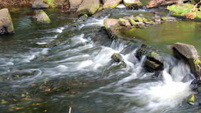 A small waterfall in the forest Stock Images