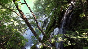 Small waterfall in the forest. Shot of a small waterfall in the forest stock video footage