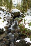 A small waterfall in the forest. On a winter day through large snow covered boulders Royalty Free Stock Image
