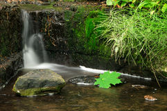 Small waterfall in forest Royalty Free Stock Photography