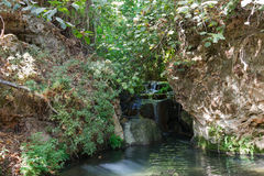 Small waterfall in a forest stream Amud Stock Images