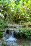 Small waterfall in a forest stream Amud Royalty Free Stock Images