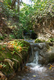Small waterfall in a forest stream Amud Stock Photography
