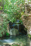 Small waterfall in a forest stream Amud Stock Photo