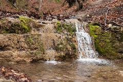 Small Waterfall in Forest Stock Image