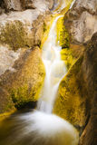 Small waterfall with golden lichen on rocks Royalty Free Stock Image