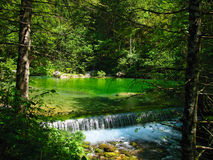 Small waterfall, green water. Small waterfall in the woods, beatifull green water, Kamniška bistrica Royalty Free Stock Photo