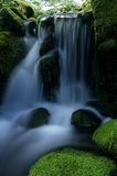Small Waterfall In Forest Stock Images
