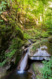 Small waterfall inside a forest Stock Images
