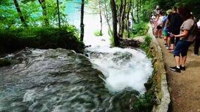 Small waterfall and Walking Track, Plitviče Lakes National Park , Croatia stock footage