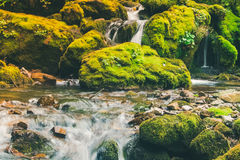 Small waterfall in the jungle. A small waterfall in the jungle Royalty Free Stock Photo