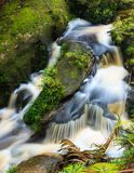 Small waterfall in jungle Royalty Free Stock Photography