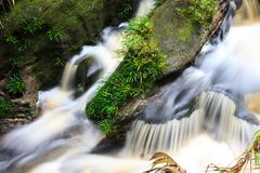 Small waterfall in jungle Stock Photo
