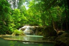 Small waterfall in the jungle. Waterfall in the jungle. Green lake stock photo