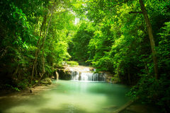 Small waterfall in the jungle. Waterfall in the jungle. Green lake stock images