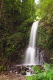 Small waterfall in jungle Stock Photos