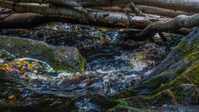 Small waterfall. In the Karelia Stock Photos
