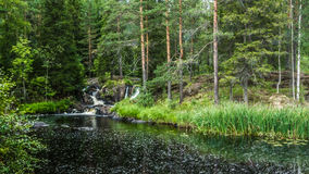 Small waterfall in the Karelia. Small waterfall in the forest stock photo