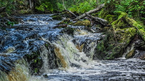 Small waterfall in the Karelia. Small waterfall in the forest Royalty Free Stock Images