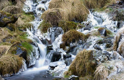 Small frozen waterfall Royalty Free Stock Photography