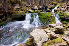 Small waterfall in the middle of forest. Beautiful waterfall in the middle of green forest in Retezat mountains Royalty Free Stock Images