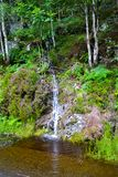 Small waterfall in middle of forest in Loch Katrine, in Highland royalty free stock image