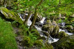 Small waterfall in middle of forest in Loch Katrine, in Highland stock photos