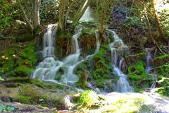 A small waterfall in the middle of a green dense forest stock images