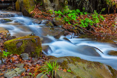 Small waterfall  in a mountain canyon Stock Image