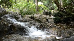Small waterfall in mountain forest stock video