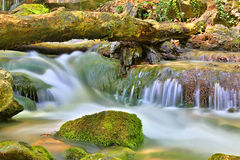 Small waterfall on mountain river Stock Image